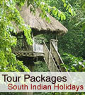 Holidays Tour Packages